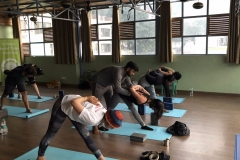 yoga teacher training rishikesh india